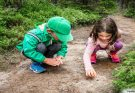 5 Educational Activities For Kids